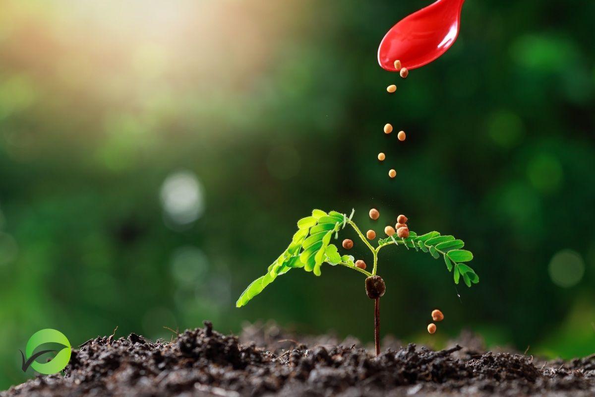 Best Controlled Release Fertilizer - Smart Fert Sdn Bhd